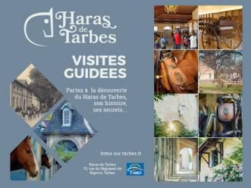 Visites guidées du Haras de Tarbes